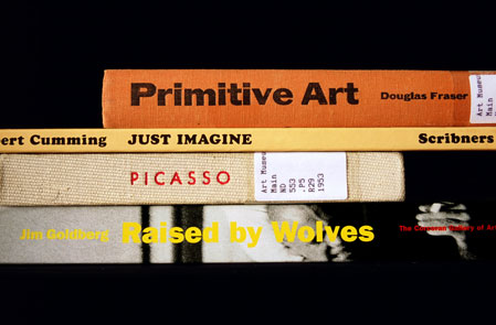 From the Sorted Books project by Nina Katchadourian